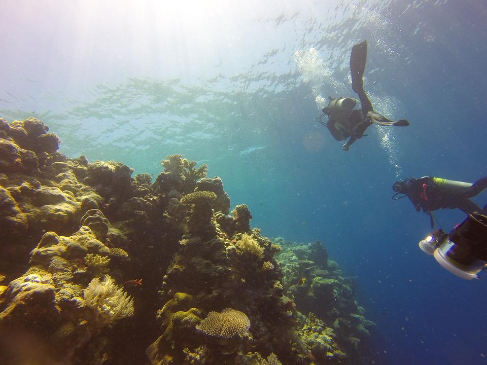 Риф в Палау